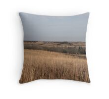 Our Land in Winter Throw Pillow