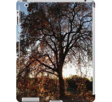 October Tree iPad Case/Skin