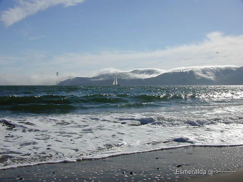 ocean by Esmeralda @->-------
