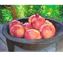 Pomegranates in Kava bowl Photographic Print