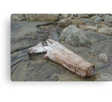 Dead Wood. I. Canvas Print