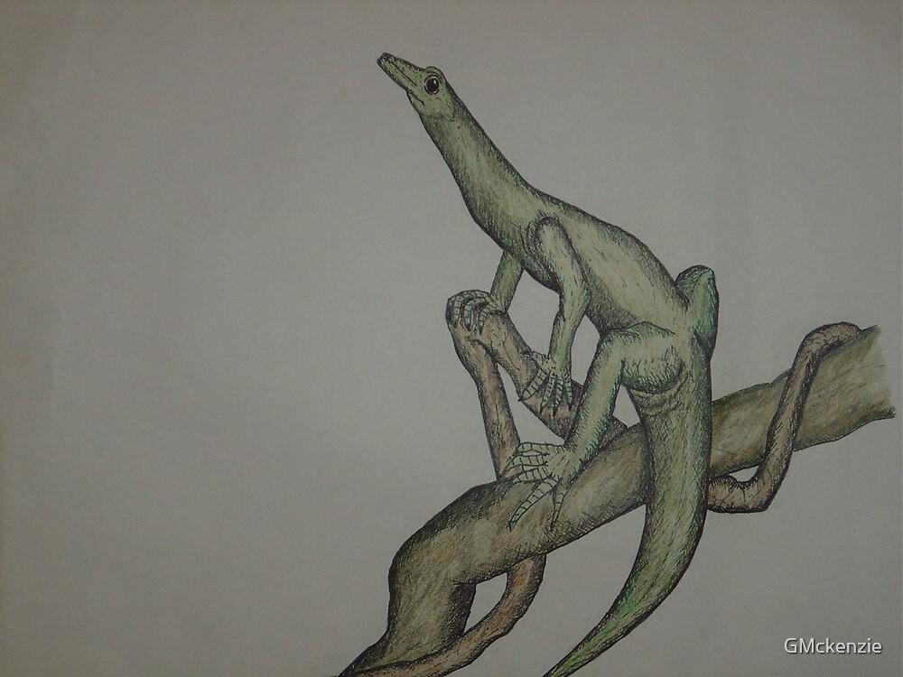 lizard by GMckenzie