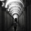 Stranger In The Night by Tim Heraud
