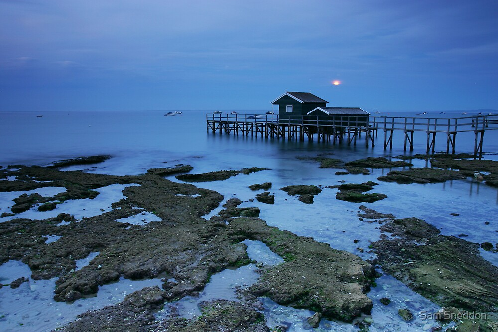 Blue Moonrise by Sam Sneddon