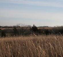 Our Land in Winter 2 by kellymorris