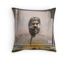 Vatican Fountain Throw Pillow