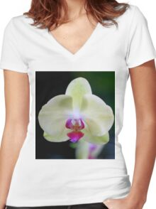 White and Pink Orchid Women's Fitted V-Neck T-Shirt