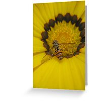 Hoverfly at Rest Greeting Card