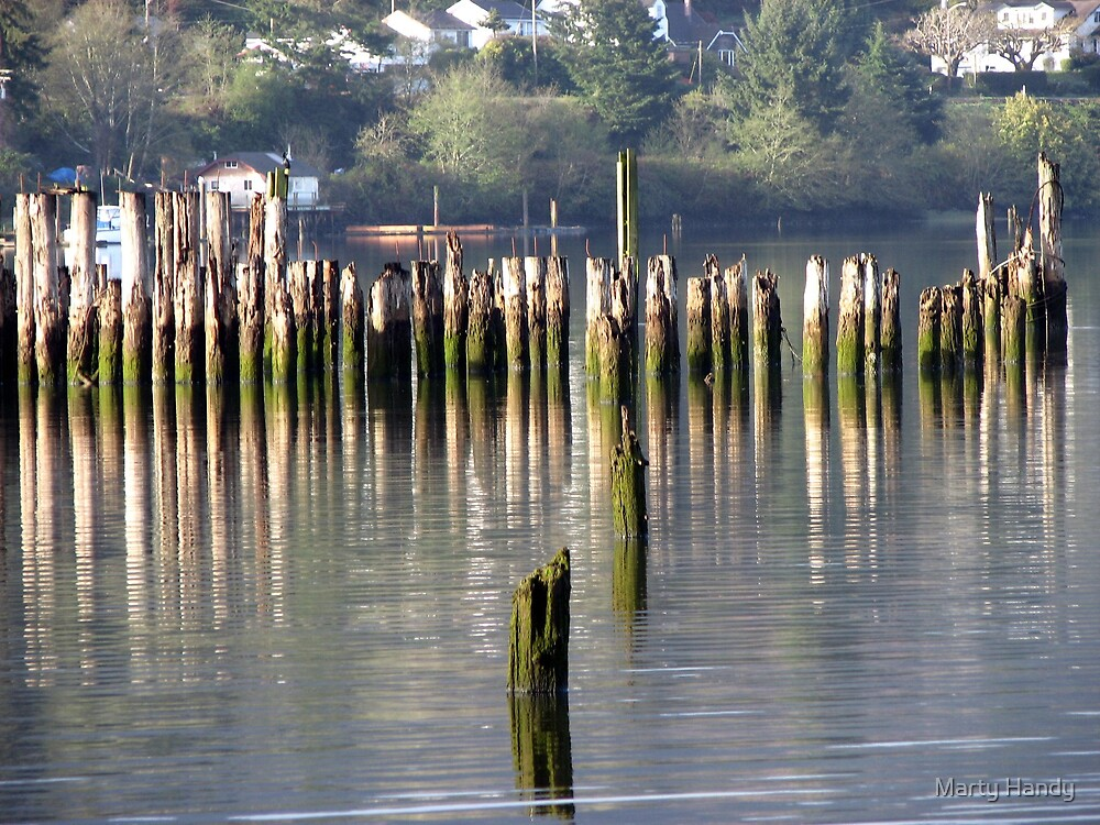 River Logs by Marty Handy