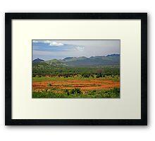 Kenyan Landscape Framed Print