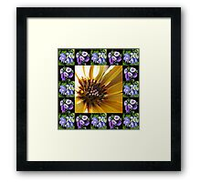 Cape Daisy, Lisianthus and Hydrangea Collage Framed Print