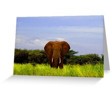 Elephant and Kilimanjaro Greeting Card