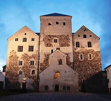 The Turku Castle by Markku Vitikainen