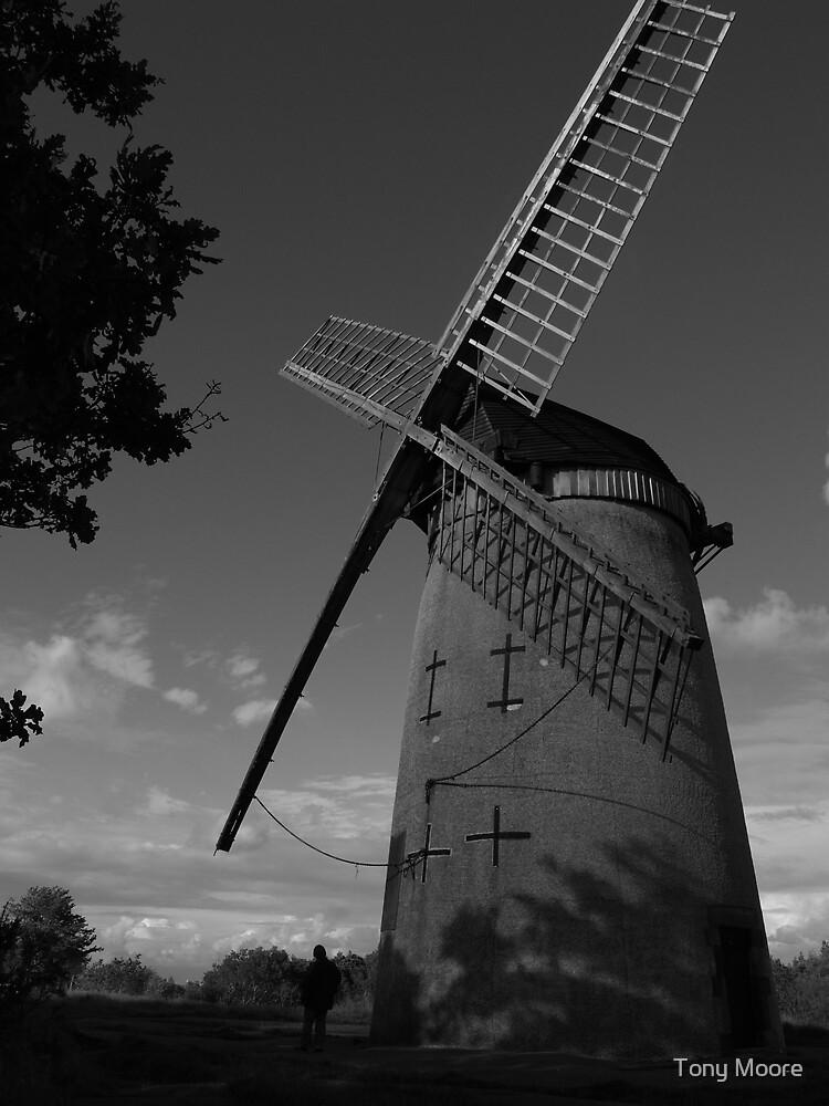 Bidston Windmill by Tony Moore