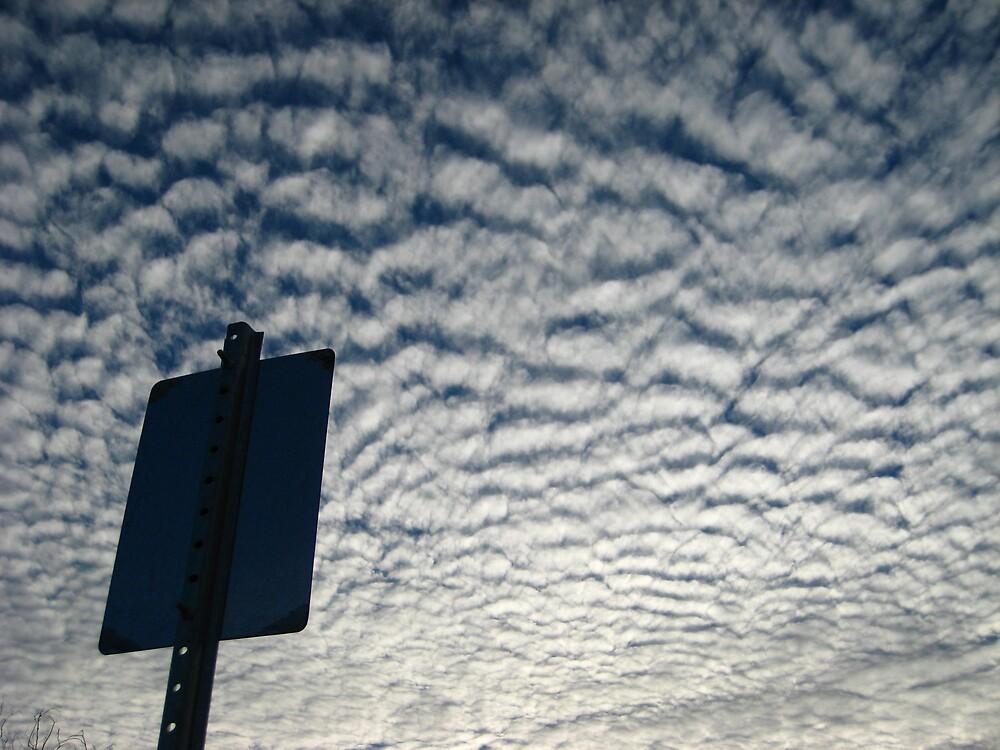 friendly skies by jamreco