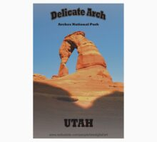 Delicate Arch by Barry L White
