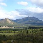 Denali Alaska by cfam