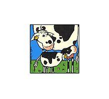 Cow II Photographic Print
