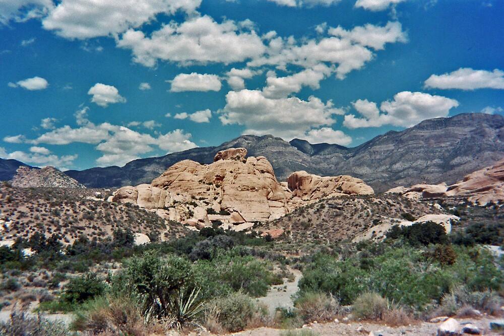 Red Rock Canyon III by Erika Benoit