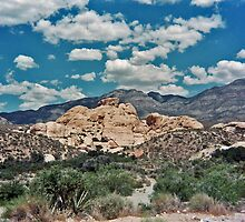 Red Rock Canyon III by Erika Rathka
