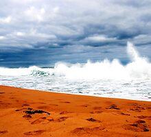 Logans Beach 1 by Rebecca McLean
