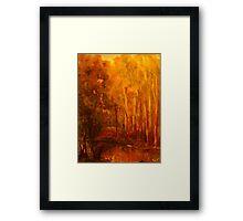 King Parrot Creek, Flowerdale, Vic Australia Framed Print