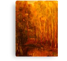 King Parrot Creek, Flowerdale, Vic Australia Canvas Print
