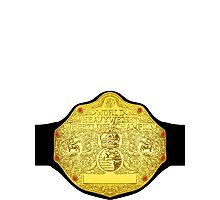 World Heavyweight Champion Photographic Print