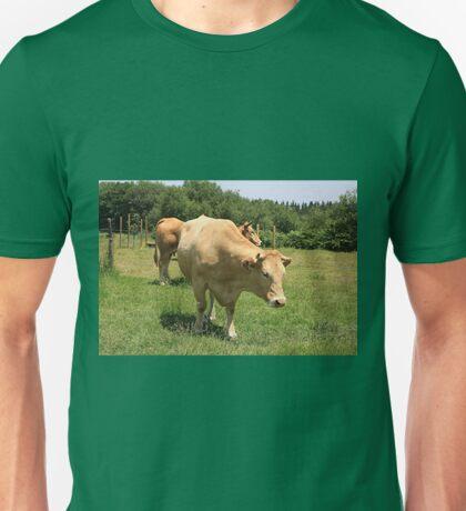 Cows in field, El Camino, Spain 2 Unisex T-Shirt
