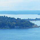 Seattle's Alki Point 517 by jduffy111