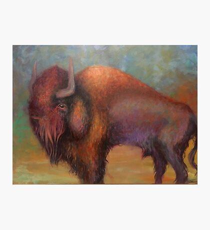 Funky Bison by Logan Artisan Photographic Print