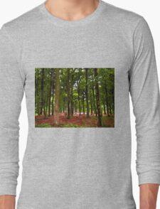 Beautiful Forest landscape Long Sleeve T-Shirt