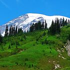 Mount Rainier 534 by jduffy111