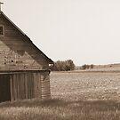 Old Barn by Brad Sumner