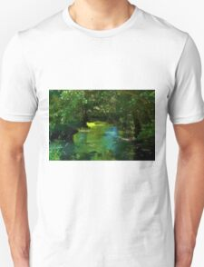 Small beautiful brook stream in a forest T-Shirt