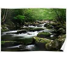 Mossy Mountain Stream Poster