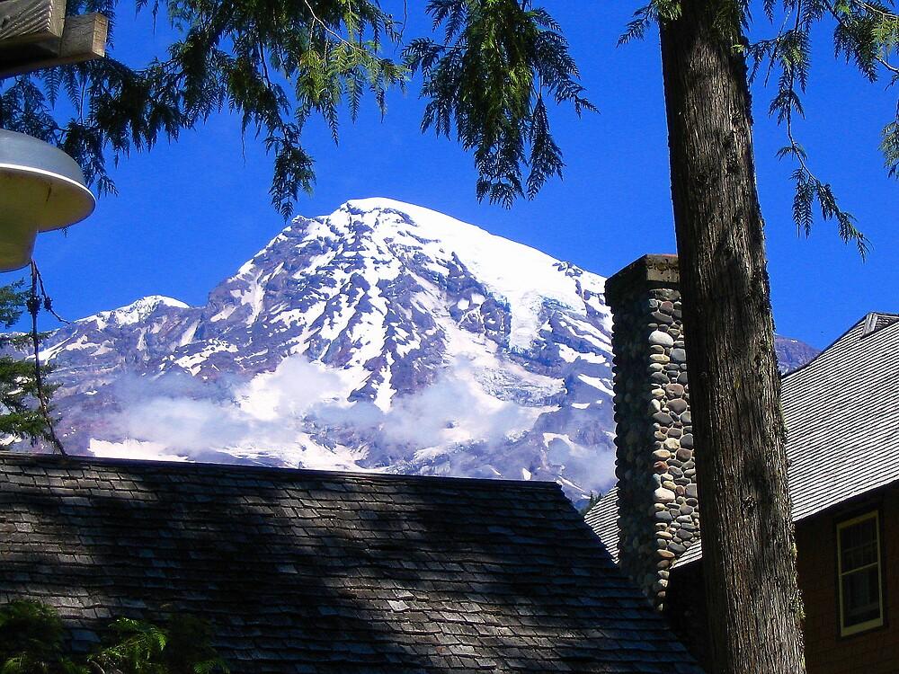 Mount Rainier 097 by jduffy111