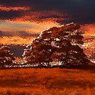 sunset Blubberhouses Moor by spemj