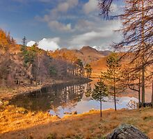 Autumn at Blea Tarn by Trevor Kersley
