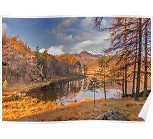 Autumn at Blea Tarn Poster