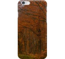 Autumn in the Woods iPhone Case/Skin