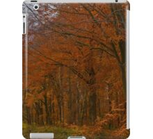 Autumn in the Woods iPad Case/Skin