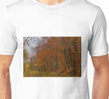 Autumn in the Woods Unisex T-Shirt