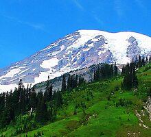 Mount Rainier 536 by jduffy111