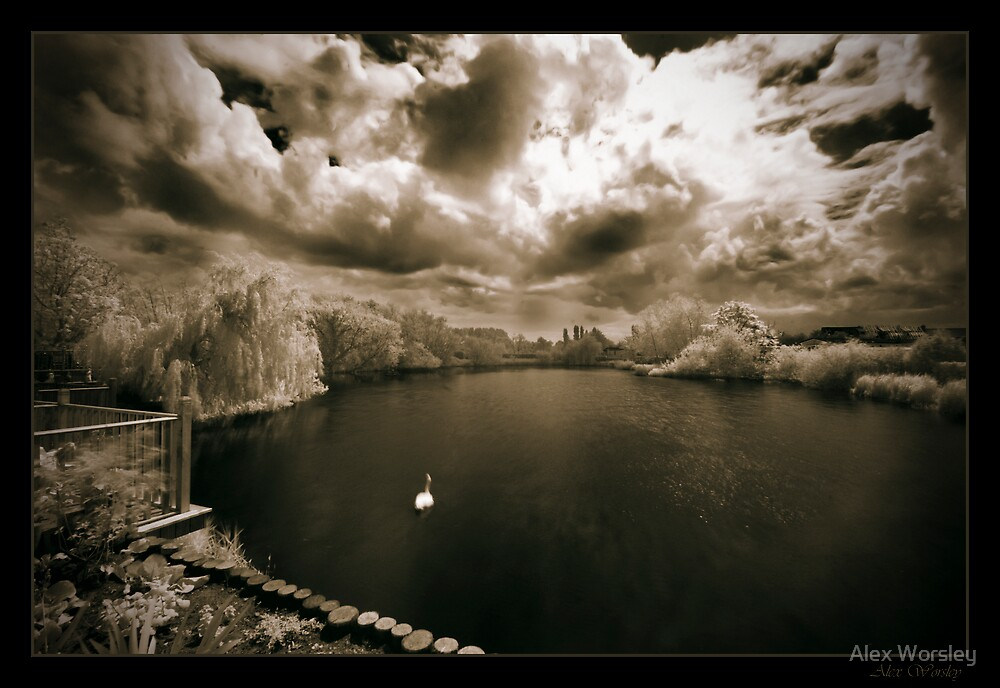 Barton pond by Alex Worsley