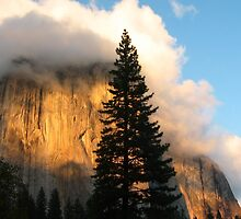 Sunset on El Capitan by Kenn Jensen