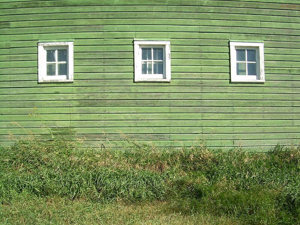Green Barn by oblivianderson