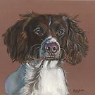 Fly English Springer Spaniel by Jane Smith