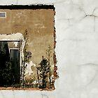 Derelict Window by robjbez