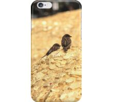 little dragons iPhone Case/Skin